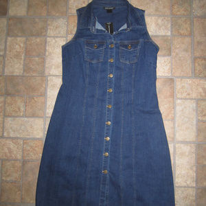 Ashley Stewart Denim Button Front Dress